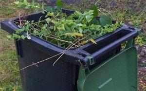 Garden rubbish clearance SE11 Kennington - Clear it waste